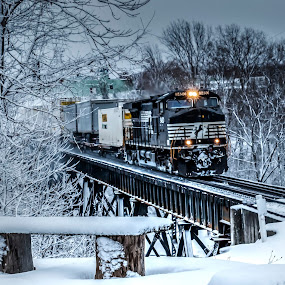 Snow bird by Michael Wolfe - Transportation Trains ( winter scene, tress, norfolk & southern railroad, bench, train trestle, gorge, train engine, snow,  )