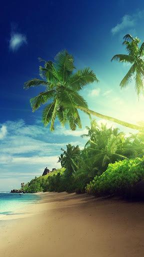 玩個人化App|夕陽在海灘上動態壁紙免費|APP試玩