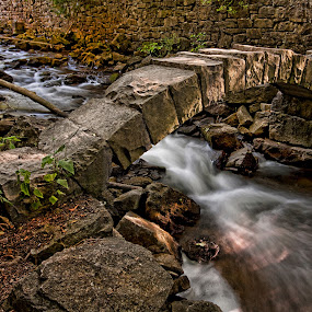 The Bridge by Carl Chalupa - Landscapes Waterscapes ( bridge.,  )