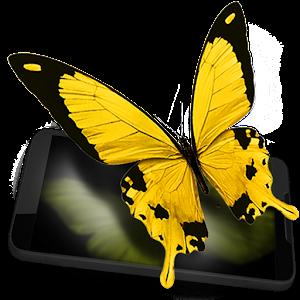Butterflies live wallpaper t7QeKjKa8BLvUpKVMC2Y
