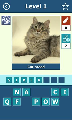 玩益智App 猫品种:测验免費 APP試玩