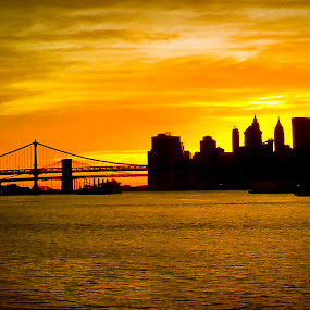 Brooklyn at sunset by Desiree DeLeeuw - Landscapes Sunsets & Sunrises ( sunset, buildings, new york, bridges, city, brooklyn, golden hour, sunrise )