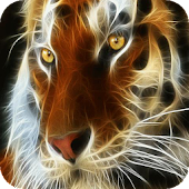 Auburn tiger LWP