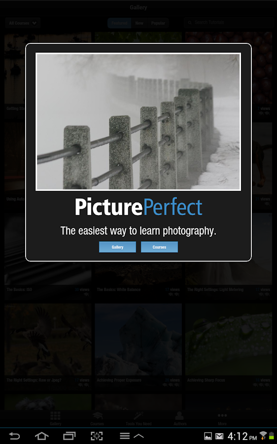 PicturePerfect Beta - screenshot