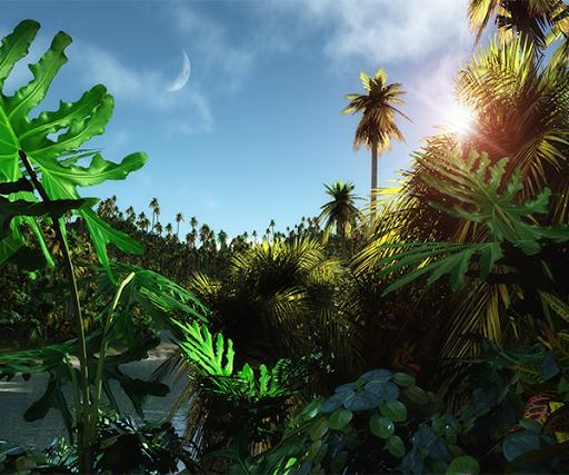 【免費個人化App】Jungle Live Wallpaper-APP點子