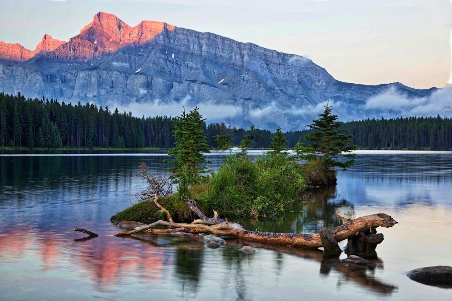 Sunrise at Two Jack Lake by Becky Simrose - Landscapes Mountains & Hills ( sunrise two jack lake, rocky mountains, island )
