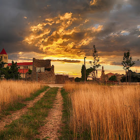 The field of gold  by Davor Strenja - Landscapes Travel ( field, clouds, sky, red, church, grass, sunset, way, gold, sun )