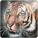 3D Tiger (PRO)