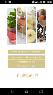 MySpaWater Recipes- screenshot thumbnail