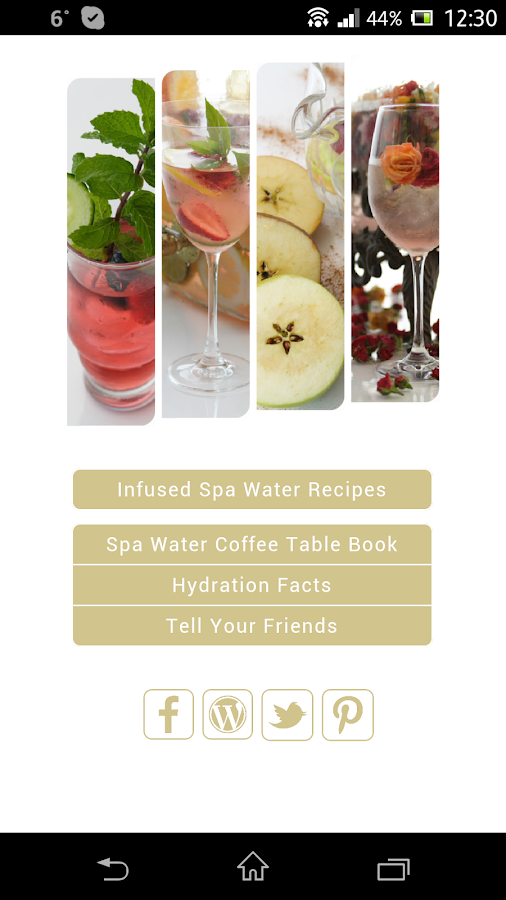 MySpaWater Recipes - screenshot