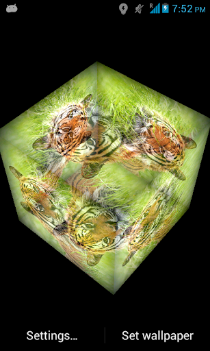 3D Tiger Live Wallpaper