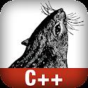 C++ in a Nutshell logo