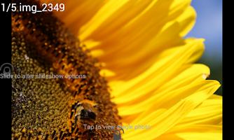 Screenshot of Digital Photo Frame Premium