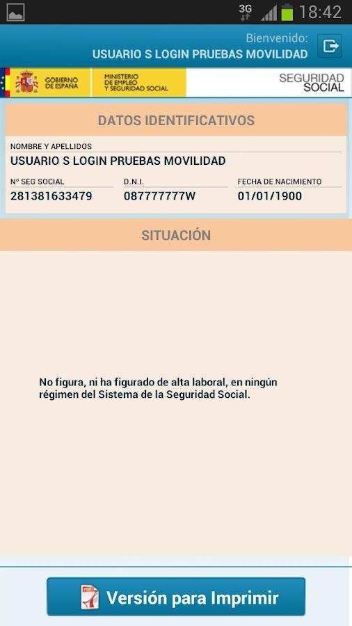 Seg-Social Informe Situación - screenshot