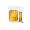 DualSim Data Manager