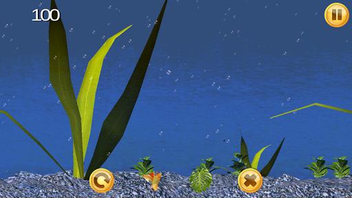 Goldfish Fun 3D