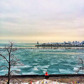 Navy Pier Frozen Water Pieces by Bre Marie - Landscapes Waterscapes ( garyfonglandscapes, holiday photo contest, photocontest )