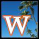 Wikiki: キャッシュ ウィキペディア