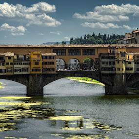 Ponte Vecchio by Geanina Boureanu - Buildings & Architecture Bridges & Suspended Structures ( ponte vercchio, firenze )