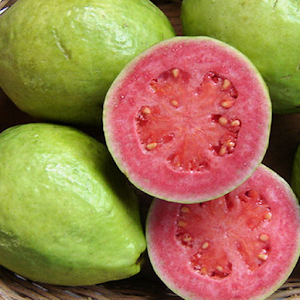 Freeapkdl Guava Puzzle for ZTE smartphones