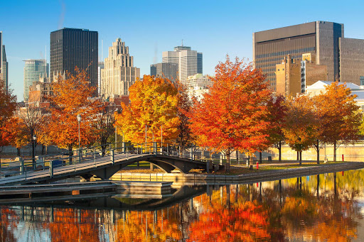 Montreal-fall-foliage - Fall foliage in Montreal.