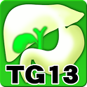 Tokyo Guidelines (TG13) icon