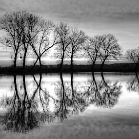 Sunrise on the magical lake Lajmir.. by Željko Salai - Black & White Landscapes