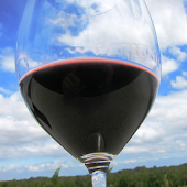New York Winery Finder: Tablet
