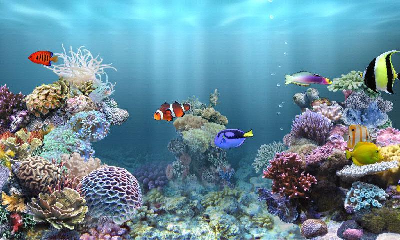 aniPet Marine Aquarium HD - Android Apps on Google Play