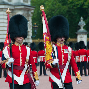 Changing of the Guard by Michael McMurray - People Professional People ( color bearer, british, redcoats, regiment, ceremony, buckingham palace, troops, army, soldier, england, london, royal, guard, tradition, colour bearer, palace, english )
