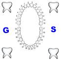 gestione schede odontoiatria logo