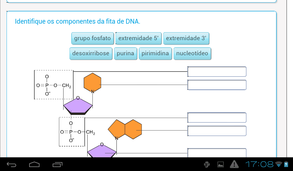 Ácidos nucleicos- screenshot