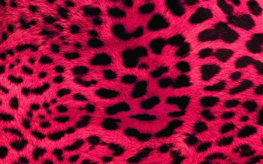 Animal Print Wallpapers HD