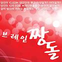 브레인짱돌 logo