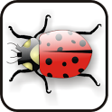 Lady Bug doo-dad icon