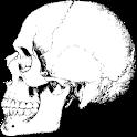 Torb's Anatomy logo