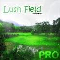 Lush Field Live Wallpaper PRO icon