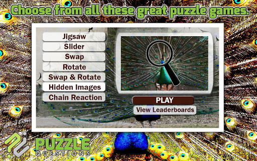 Peacock Puzzle Games