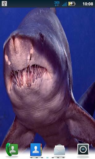 Color Shark LWP Pro