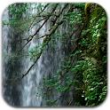 Curtain Waterfall LWP logo