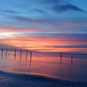Sunrise over Seabrook by Sharon Adams - Landscapes Sunsets & Sunrises ( water, autumn, colors, serene, ocean, sunrise, landscape )