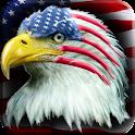 American Eagle 2 Sticker !!! logo