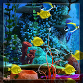 Choose Fishes Live Wallpaper