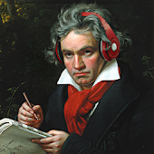 Beethoven Simulator