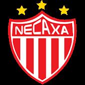 Ball 3D Club Necaxa LWP
