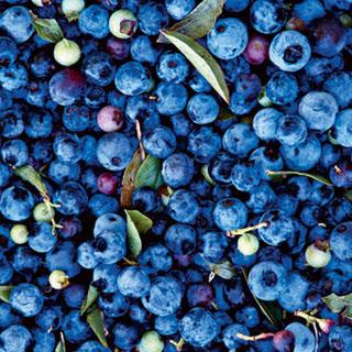 Blueberry-Lemon Sorbet