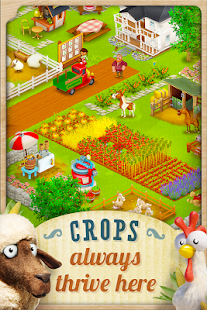 Hay Day Screenshot 19