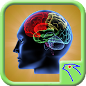 Right Brain Test icon