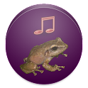 Coqui Ringtone icon