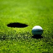 Golf Pro 3D